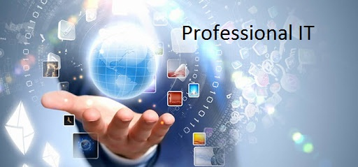7COM1080 Professional IT Code Of Conduct