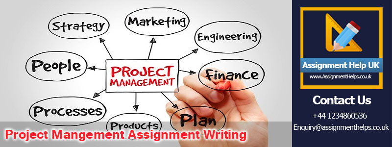 Project Mangement Assignment Writing Help