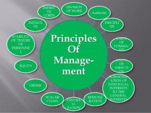 CMI501 The Principles Of Management And Leadership Organizational Context